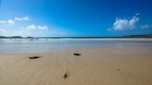 beach-1168092_1280.jpg